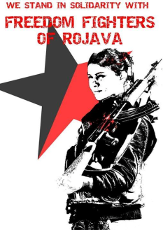 Image result for rojava anarchist