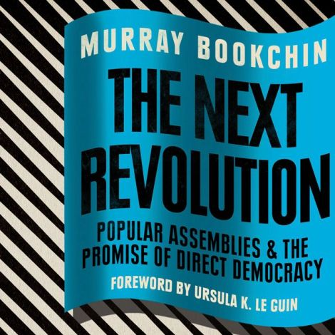 bookchin next revolution