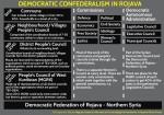democratic confederalism diagram-4